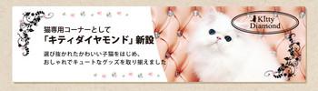 yokohama-renew_03.jpg